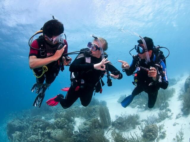 Nurkowanie na Cyprze kursy PADI